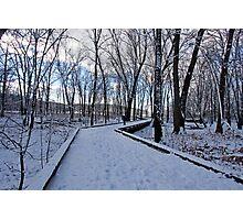 Winter Photographic Print