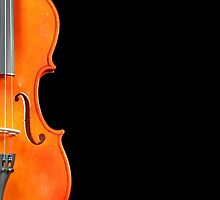 A violin on black by Dipali S