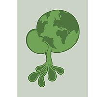Green earth Photographic Print