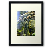Tarairi Forest Morning Framed Print