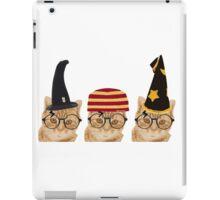 Potter cats2 iPad Case/Skin