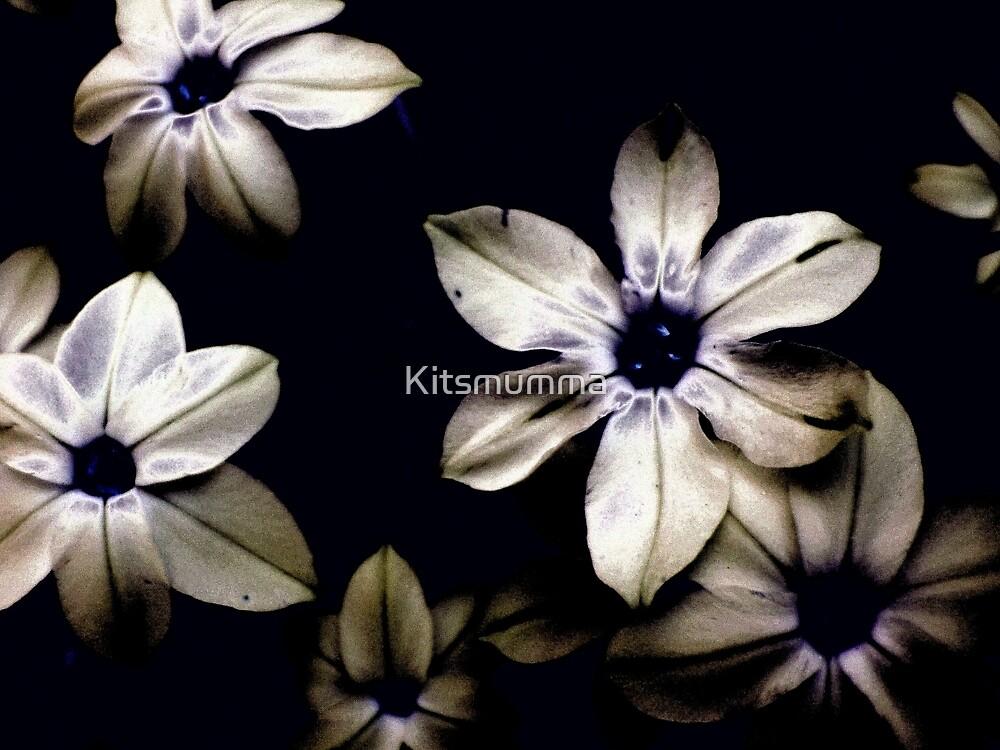 The Blues by Kitsmumma