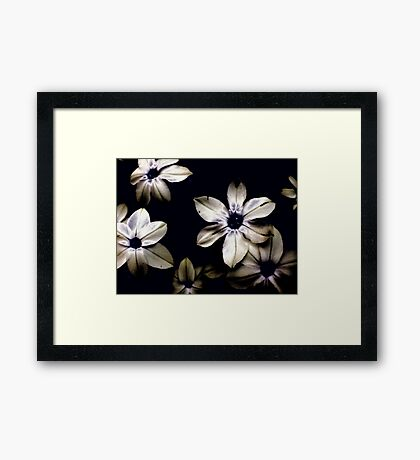 The Blues Framed Print