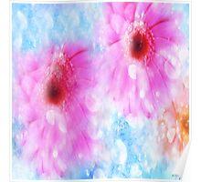 Daisy Sunlight and Raindrops  Poster