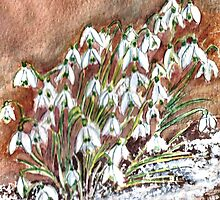 SNOWDROPS COLLECTION.(Painted) by Shoshonan