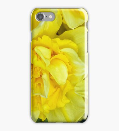 Yellow daffodils macro iPhone Case/Skin