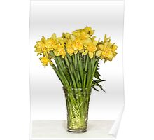 Yellow narcissus in vase Poster