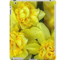 Yellow narcissus macro iPad Case/Skin