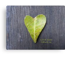 LOVE from Nature Canvas Print