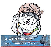Ain't No Bunny Got Time For That by thatalisongirl