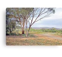 Picturesque scene along the Heysen Trail Canvas Print