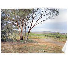 Picturesque scene along the Heysen Trail Poster