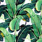 PALM LEAVES by bondandreabond