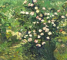 Vincent Van Gogh - Roses by lifetree