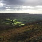North York Moors National Park in sunlight by GeorgeOne