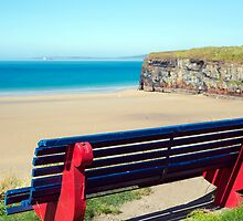 cliff walk bench overlooking the beach by morrbyte