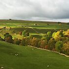 Yorkshire Dales Farms by GeorgeOne