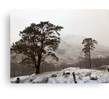 Snow Scene on Glencoe #2 Canvas Print