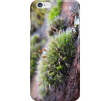Grey Cushioned Grimmia moss iPhone Case/Skin