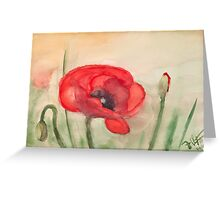 Mohnblume - Grand Red Poppy Greeting Card