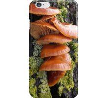 Velvet Shank mushrooms iPhone Case/Skin