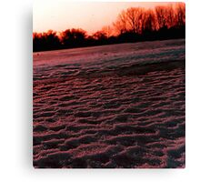 Black ice and snow Canvas Print