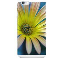 Spring Daisy iPhone Case/Skin