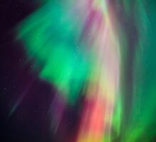 Beautiful multicolored northern lights in Finland by Juhani Viitanen