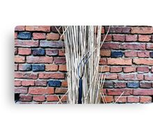 Countryside . Canvas Print