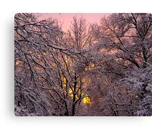 Pink Winter Sunset Canvas Print