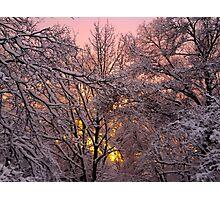 Pink Winter Sunset Photographic Print