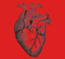 Anatomical Heart One Piece - Short Sleeve
