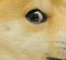 Doge Sticker