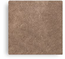 Brown leather Canvas Print