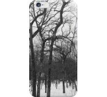 Stark Hamptons Winter Snowy Woods iPhone Case/Skin