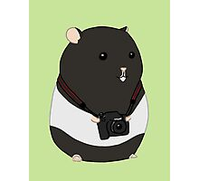 Hamster Photographer Photographic Print