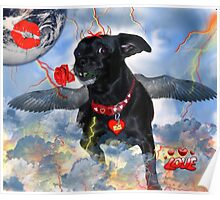 The Devil Cupid Dog That Came From Outer Space Poster