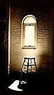 Spotlight by Nigel Bangert