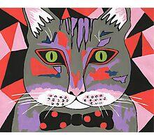 Mr Cat Photographic Print