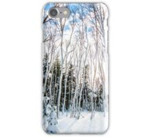 St Anns Bay Trail, Cape Breton iPhone Case/Skin