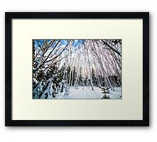 St Anns Bay Trail, Cape Breton Framed Print