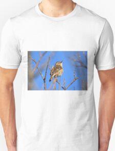 Sedge Warbler  T-Shirt