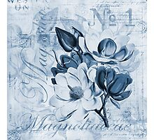 Blue Magnolia Photographic Print