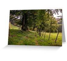 Meadow Grass Path Greeting Card