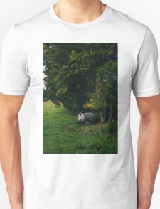 Water Tank In A Pasture T-Shirt