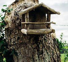 Rustic Wooden Birdhouse by PatiDesigns
