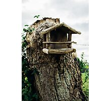 Rustic Wooden Birdhouse Photographic Print