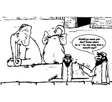 Zoo Humour - Cartoon 0011 Photographic Print
