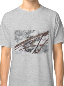 Song sparrow in the snowy brush Classic T-Shirt