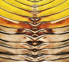 Palm Frond Leaf Macro by Phil Perkins